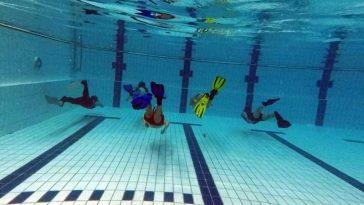 Padi Freediver cursus oktober 2018
